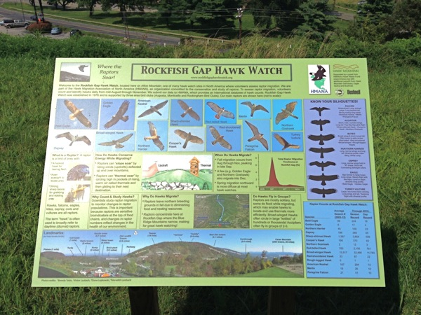 Hawk Watch raptor ID sign