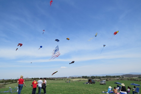 Kites at Moore farm